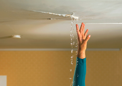 What are the signs your business has water damage?